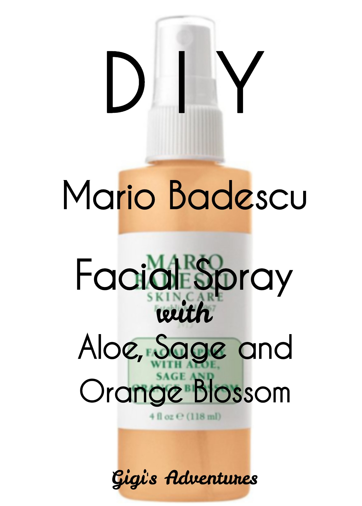 Diy Mario Badescu Facial Spray With Aloe Sage And Orange